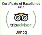 badge_tripadvisor